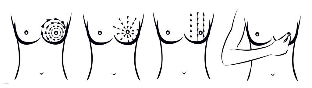 Exploración de la mama